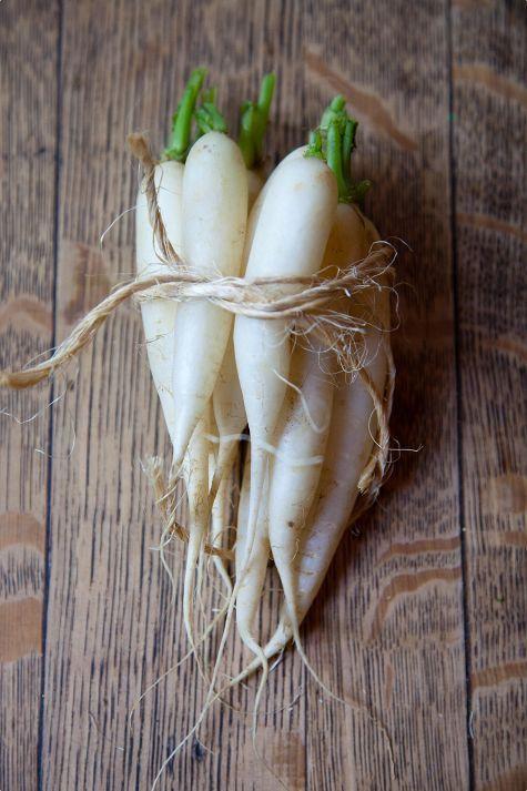 Radish (Spicy Heirloom Radish Salad Recipe)