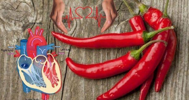 تناول الفلفل الحار أربع مرات أسبوعيا يقلل خطر الوفاة بأمراض القلب Oumhidaya Stuffed Peppers Vegetables Food