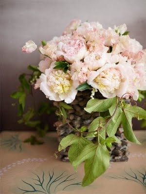 vintage ladies....: Beautiful Flower, Flower Galore, Floral Creations, Blushes Pink, Fiore Fresco, Flower Pots, Fleur Exquisite, Pink Peonies, Favorite Flower