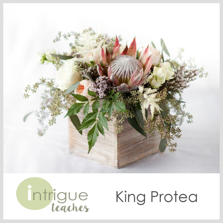 King Protea Centerpiece #Intrigueteaches https://www.intrigueteaches.com/