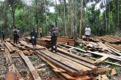 KLHK Gelar Perkara Pembalakan Liar Hutan Lindung Suaka Margasatwa Kerumutan