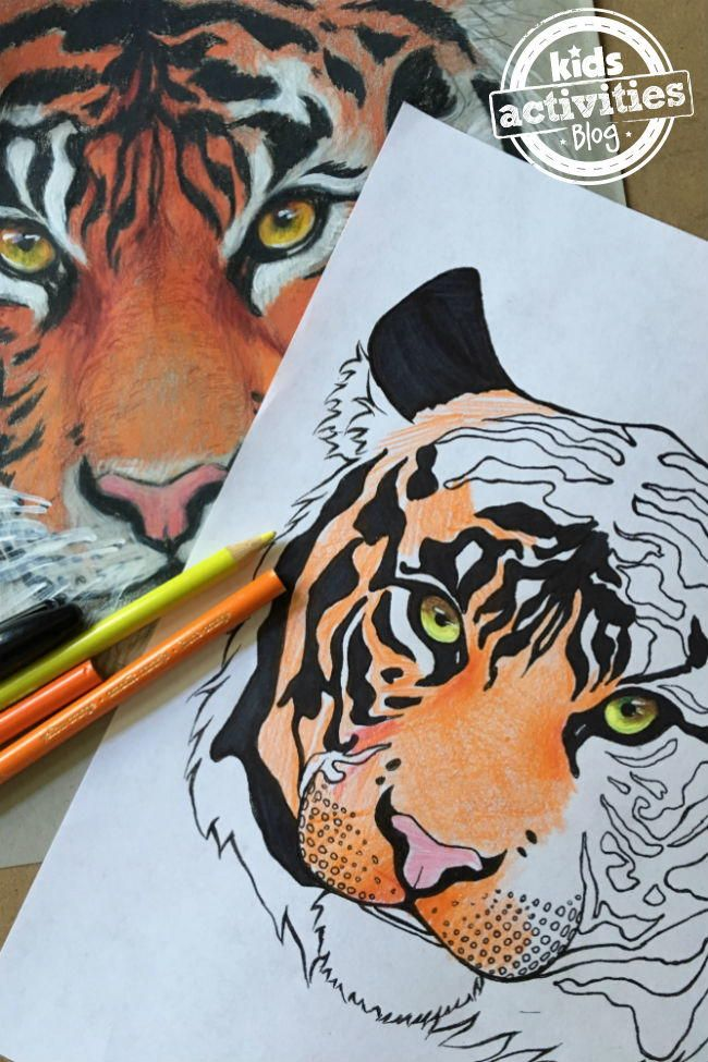 216 Best Free Adult Coloring Book Pages Images On Pinterest