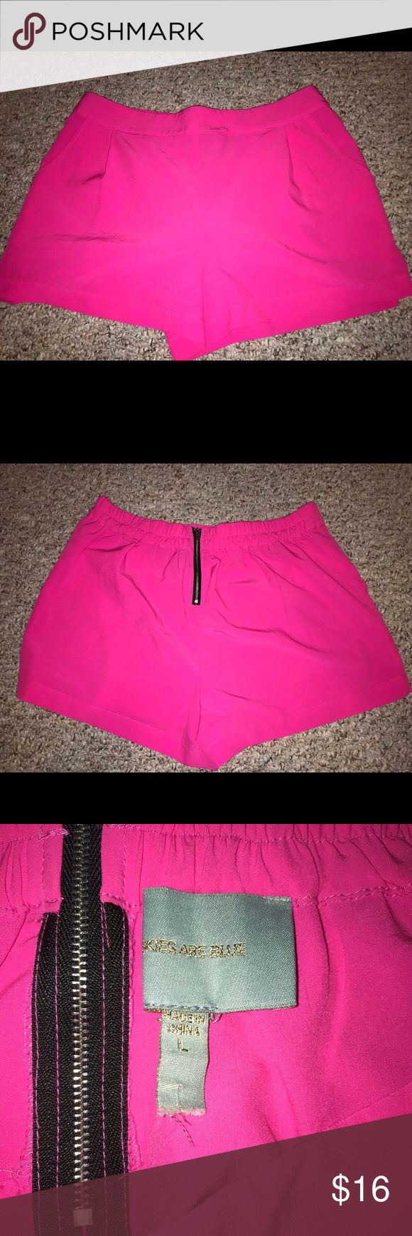 Hot pink shorts Hot pink shorts with exposed back zipper. Brand skies are blue from stitch fix size large. Pleats in the front. Really cute. Worn twice Skies Are Blue Shorts