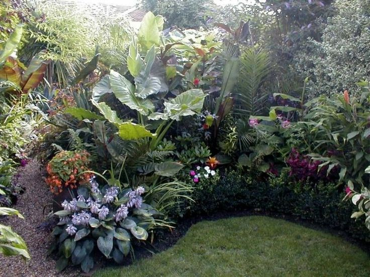 1000 ideas sobre jardines tropicales en pinterest