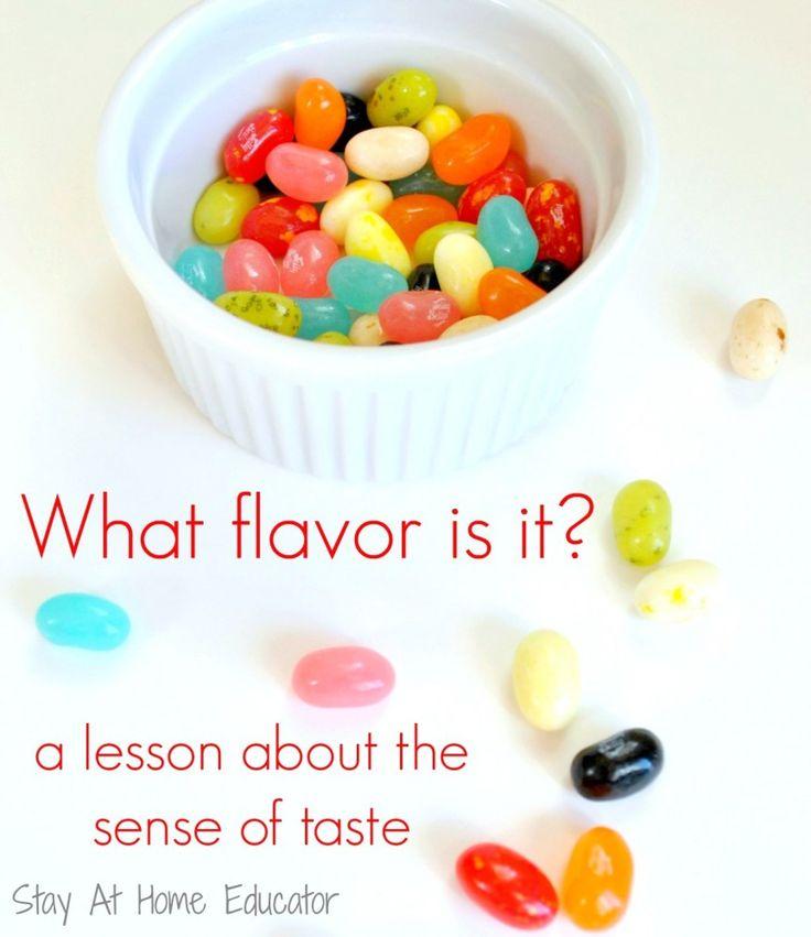 Five Senses Activity for Preschool and Kindergarten. What Flavor is it?