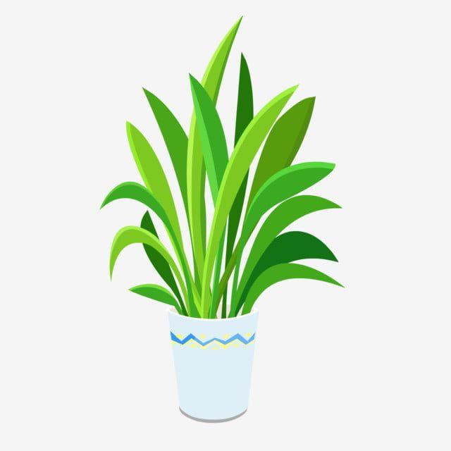 Plant Element Indoor Vase Flower Pot Material Vase Clipart Flowers Indoor Flower Png And Vector With Transparent Background For Free Download Flower Pots Indoor Flowers Flower Vases