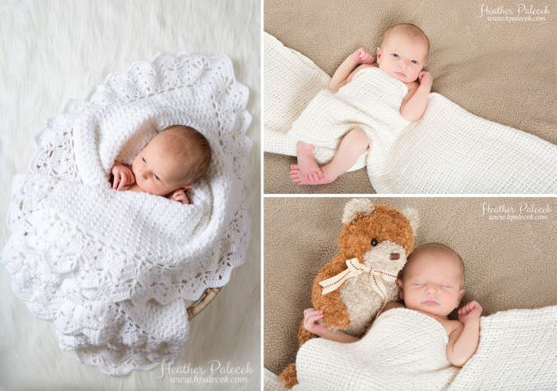 Newborn portrait session in verona nj hamilton nj newborn photographer