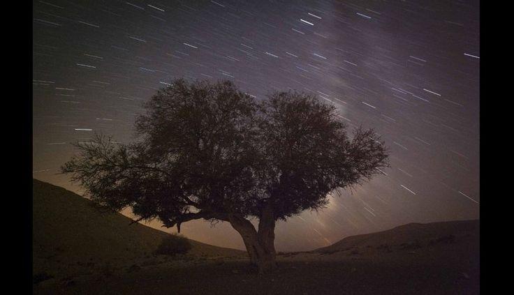 FOTOS: las impresionantes imágenes de la lluvia de Perseidas a su paso por la Tierra