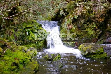 Kahurangi Waterfall, Tasman Region, New Zealand Royalty Free Stock Photo
