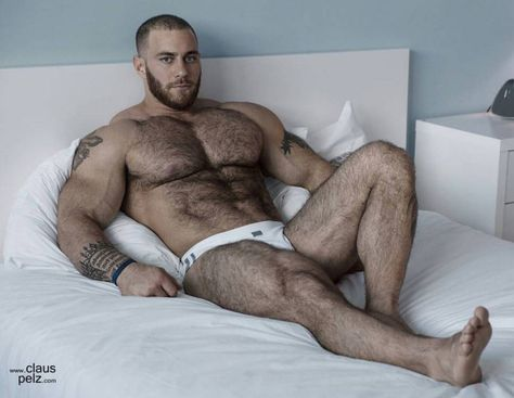 Muscle Bear Hairy