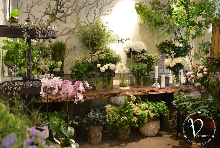 Stunning Paris Florist                                                                                                                                                                                 More