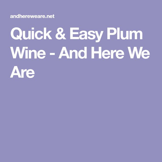 Quick & Easy Plum Wine - And Here We Are