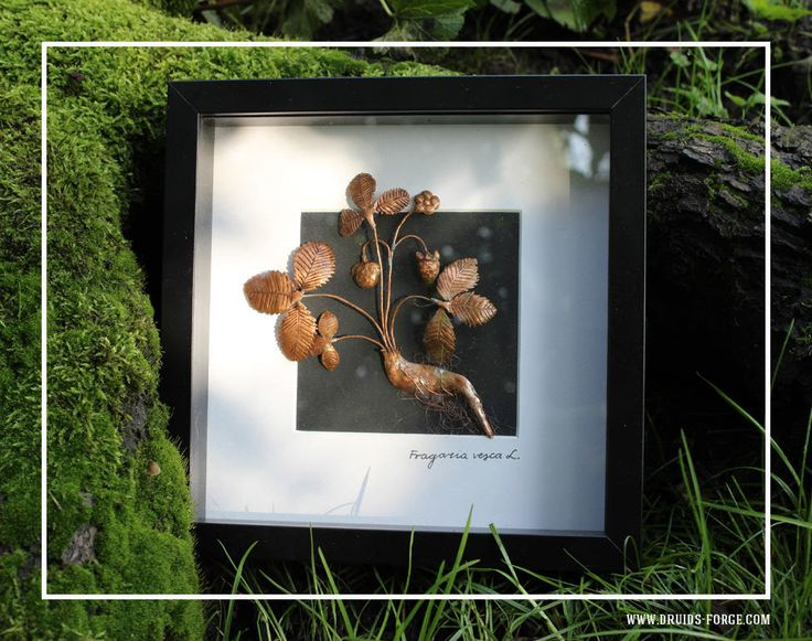 Excited to share the latest addition to my #etsy shop: wild strawberry picture, repoused cooper image, vintage herbarium, bas-relief with passe partou, home decoration, wall art, home living art http://etsy.me/2DumBRX #housewares #homedecor #copper #herbarium #wild