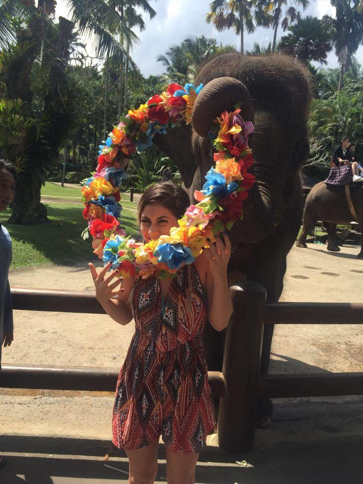 Elephant park, Bali ✌🏻️