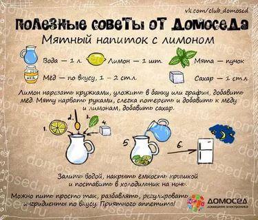 рецепты в картинках на все случаи жизни: 6 тыс изображений найдено в Яндекс.Картинках