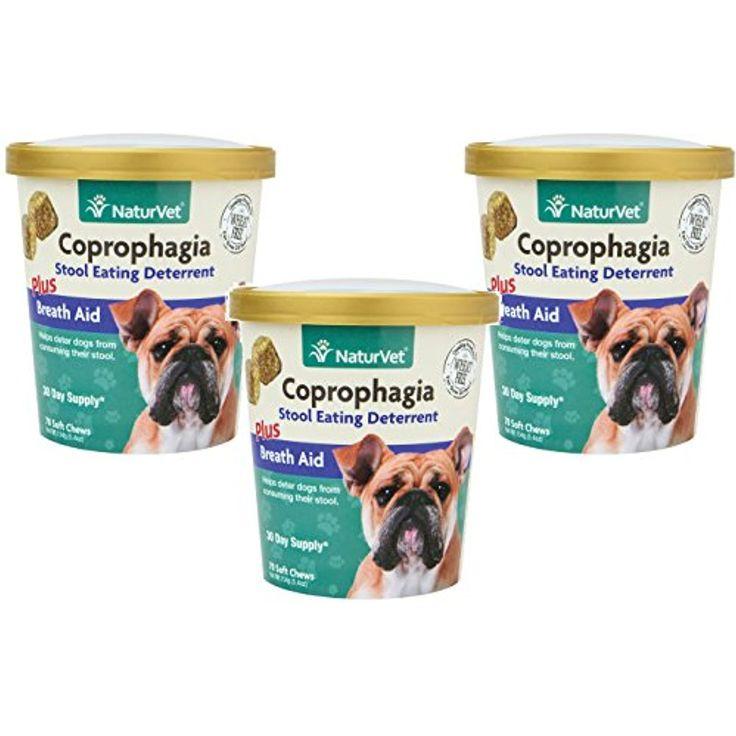 powder to put in dog food to stop eating poop