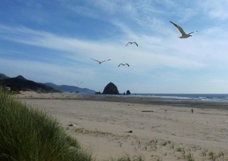 Cannon Beach, Oregon  by Katie Archibald-Woodward