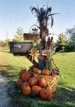 Mailbox for Fall.   To see another beautiful Autumn Mailbox, visit:   http://unskinnyboppy.com/2012/09/why-do-i-love-fall-dcor-i-cant-kill-it-if-its-already-dead/