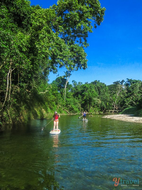 Stand Up Paddle Boarding, Mossman River, Port Douglas, Australia