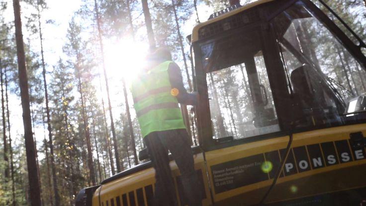 Hämeen ammattikorkeakoulu - Metsätalousinsinööri (AMK)