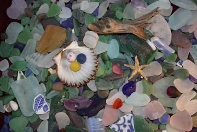 Treasures from Dominion Beach: ~ by Corinne Reid, Cape Breton, Nova Scotia, Canada Where was this photo taken? Dominion Beach,Cape Breton,Nova Scotia,Canada What were your feelngs