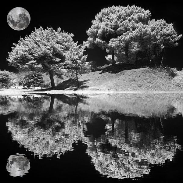 The Awesome Wonder of Infrared Photography