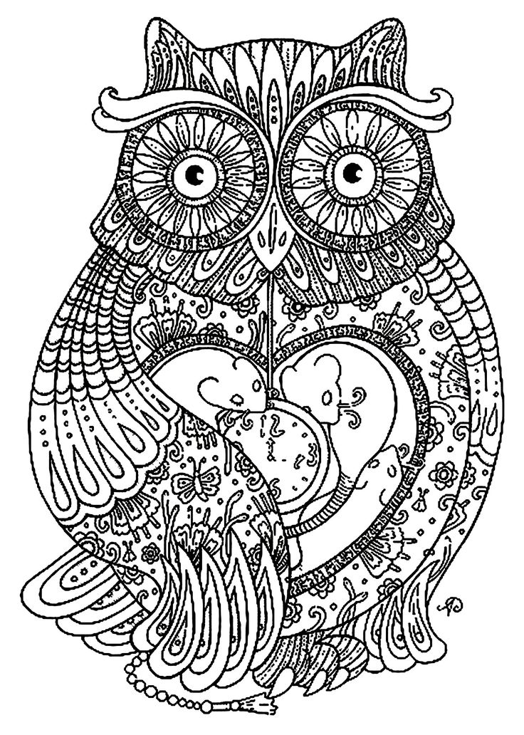 To print this free coloring page coloring adult big owl