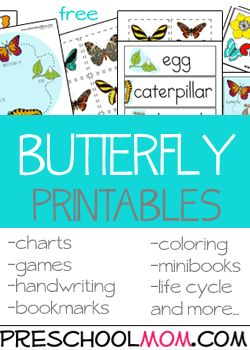 Butterfly Preschool Printables There is nothing more fun about great set of printable wordwall cards, file folder games, classrom charts, bookmarks, coloring pages and more.  Free Preschool Printables at Preschool Mom