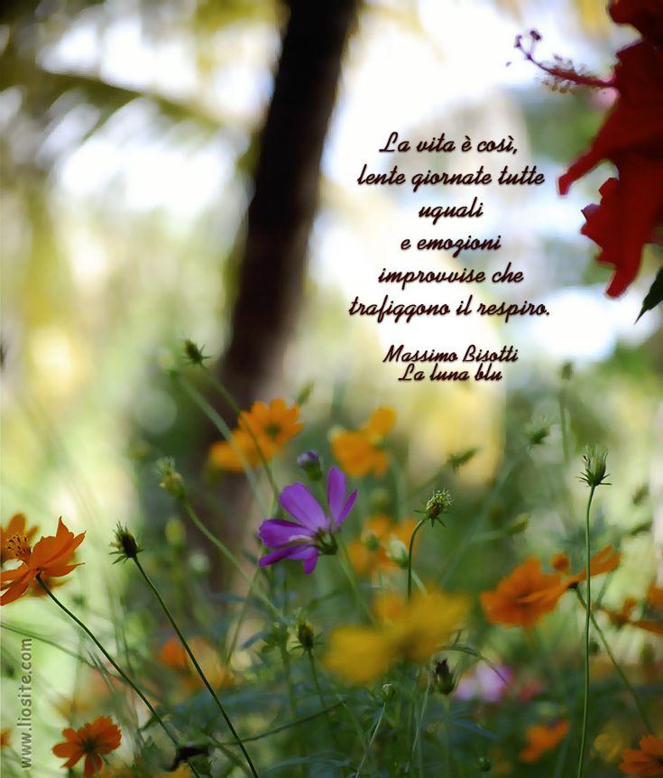 Massimo Bisotti – La vita è così, lente giornate tutte uguali