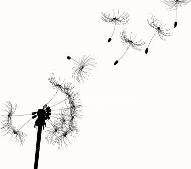 dandilion - Click image to find more Art Pinterest pins