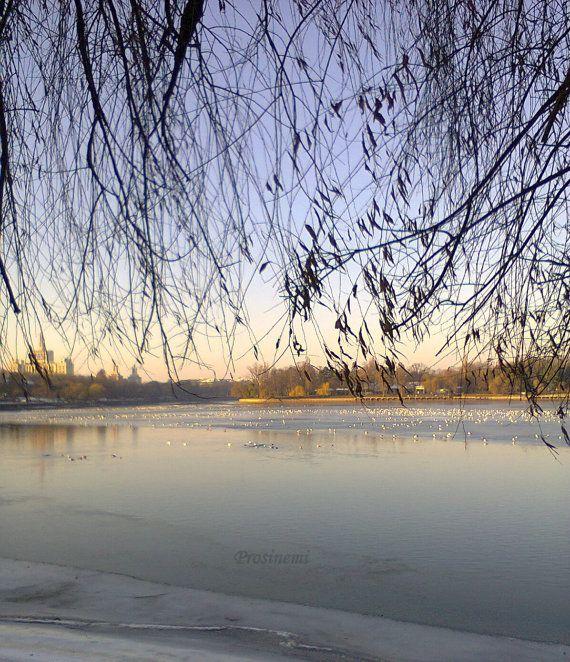 Frozen lake winter landscape nature photo print par prosinemi, €15.00