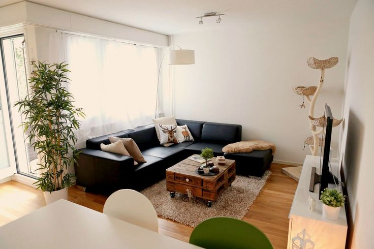Gemütliche 3 Zimmer Wohnung in Effretikon zu vermieten.