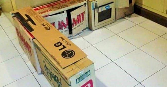 Она превратила старые коробки в то, о чем мечтает каждый ребенок...