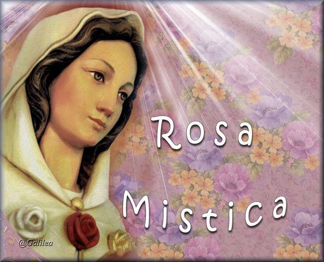VIRGEN MARÍA, RUEGA POR NOSOTROS : MAYO, MES DE MARÍA - DÍA 20 - ROSA MÍSTICA, TORRE ...