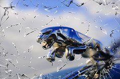Smashing Photograph  by Alex Hardie