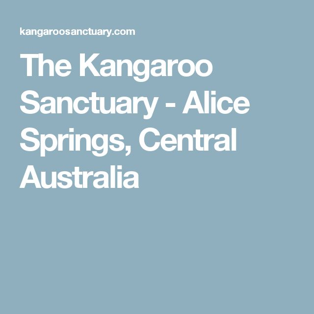 The Kangaroo Sanctuary - Alice Springs, Central Australia