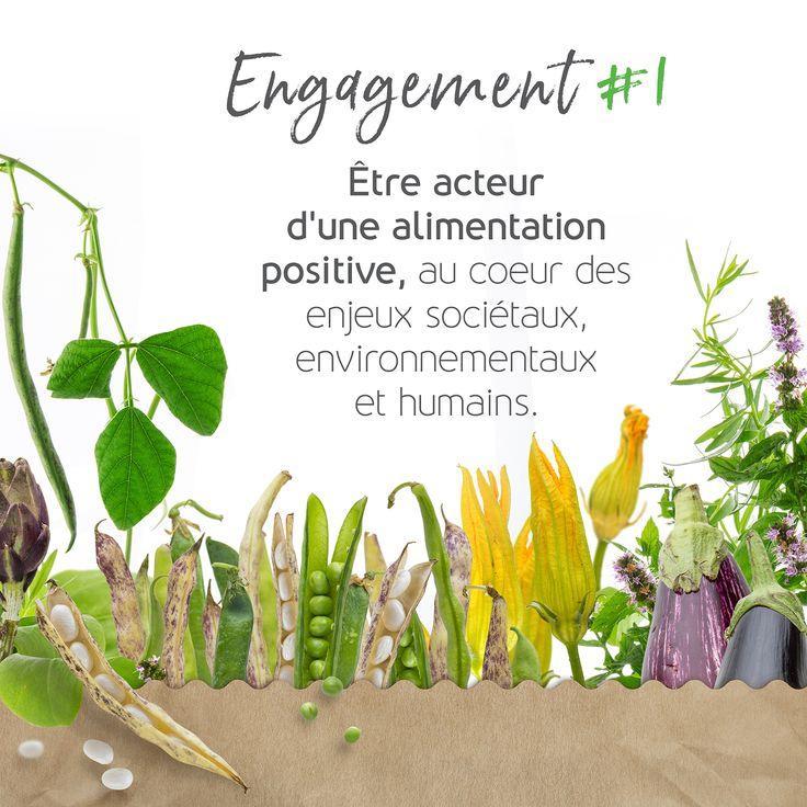 Une alimentation positive pour la planète, pour votre santé, pour les territoires.... mais surtout pour vos papilles 😋🌎   #léguminoVores #veggiefood #veggie #instafood #veggielovers #miam #locavore #yummy #alimentationpositive
