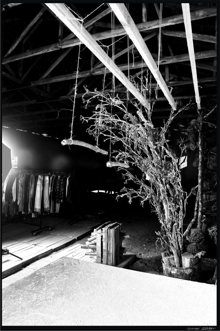 backstage tns. gigio