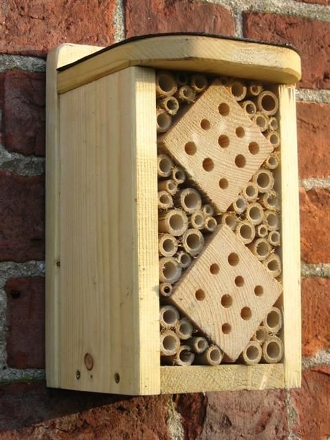 "Give beneficial pollinating insects a home in a Bug Hotel.   The different sized canes provide homes for a variety of different species.    The exterior is painted with a non-toxic, water-based preservative (available in a selection of colours).   With roofing felt which protects the box from the weather, making the box last much longer.            The box is approximately 26cm/10"" (H), 15cm/6"" (W) and 15cm/6"" (D)."