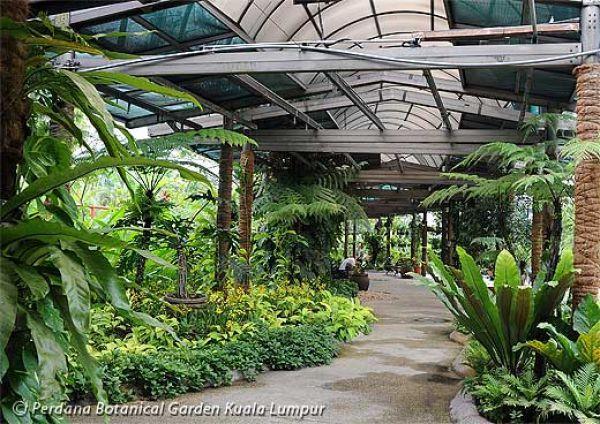 Espectáculo de orquídeas en Kuala Lumpur. Visite nuestra página y sea parte de nuestra conversación: http://www.namnewsnetwork.org/v3/spanish/index.php #nnn #bernama #malasia #orquideas #noticias #cultura #fotos #news #malaysia #garden #jardin #kl #kualalumpur