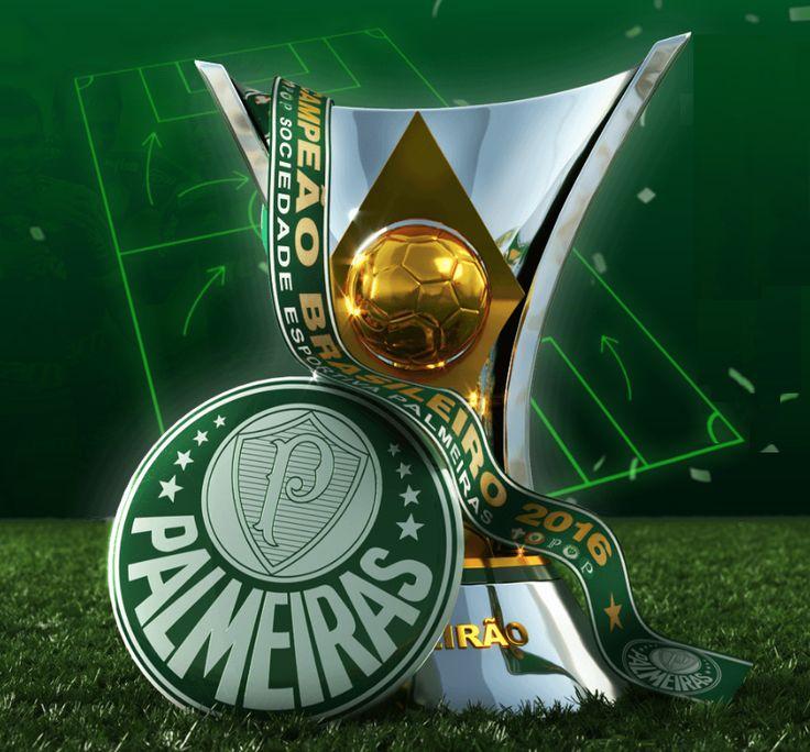 O gigante acordou !!! Palmeiras Campeão 2016
