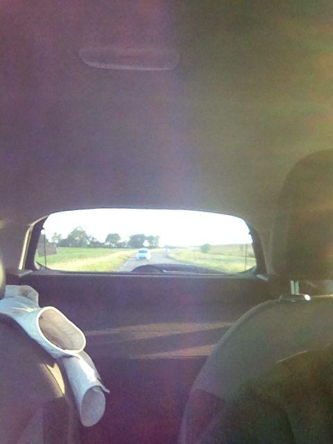 Vision de l'intérieur de La voiture C3 équipée en marquage publicitaire micro perforé