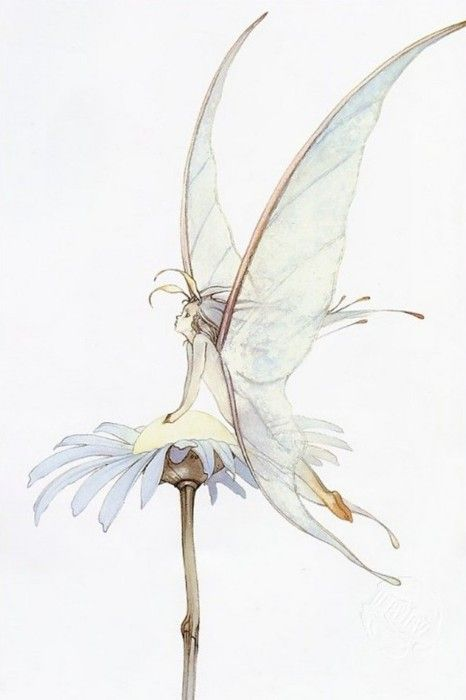 noonesnemesis: Yoshitaka Amano. I like the soft colors but i wouldnt have chosen a fairy there. Still pretty though!
