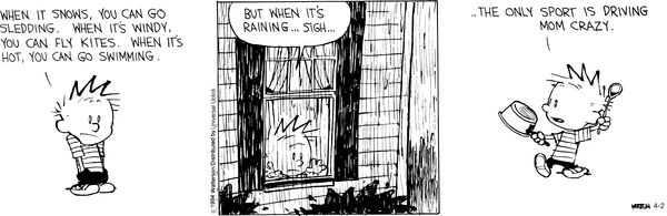 One of my fave comic : Calvin and Hobbes