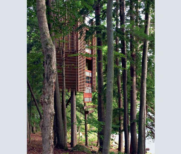 Per questa casa sull'albero, Lukasz Kos ha pensato a una struttura aperta su tre piani. È situata in una foresta nei pressi del lago canadese Muskoka (Ontario). È costata 50mila dollari e occupa 40 mq