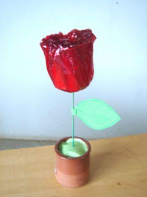 Rosa: got embolicat de paper cel·lofana vermell.