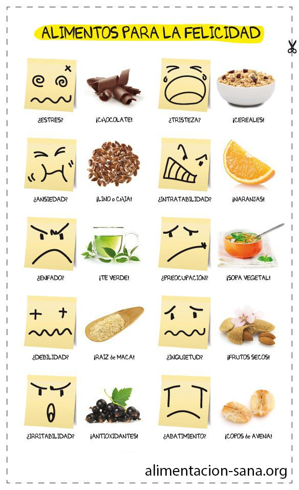 Alimentos que nos mejoran el animo