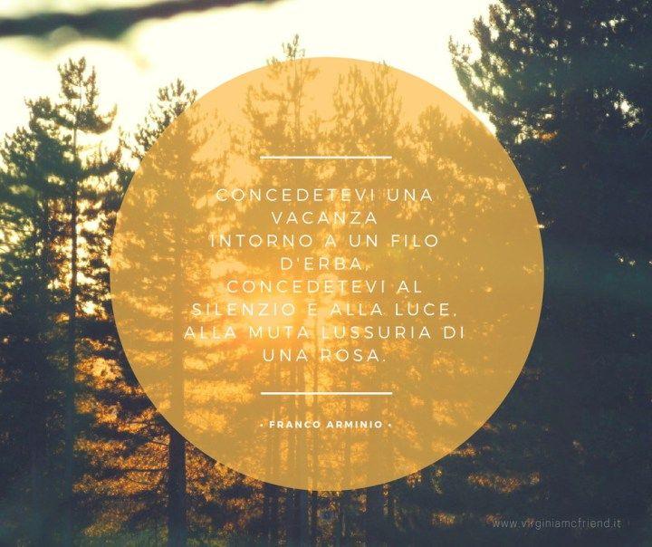 Cedi la strada agli alberi, un libro di Franco Arminio per Chiarelettere. ---- Citazioni e immagini dal Sud Italia.