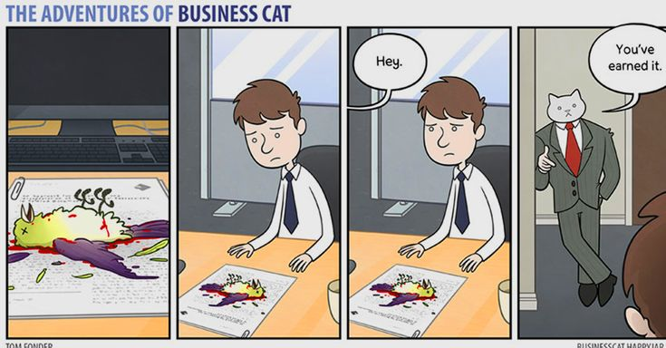 This Is What Office Life Would Look Like If Your Boss Was A Cat