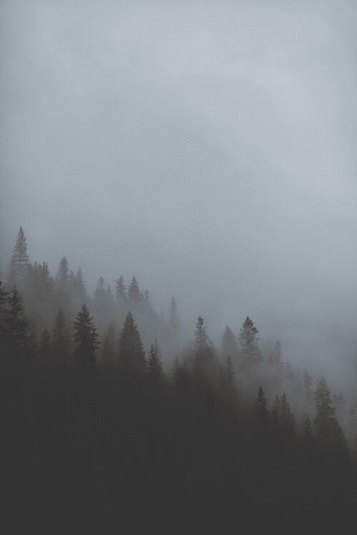 adventure, art, beautiful, black, cold, dark, darkness, dreams, explore, flower, fog, foggy, forest, grunge, hipster, indie, inspiration, magical, nature, night, old, pale, sad, sadness, sky, travel, tumblr, vintage